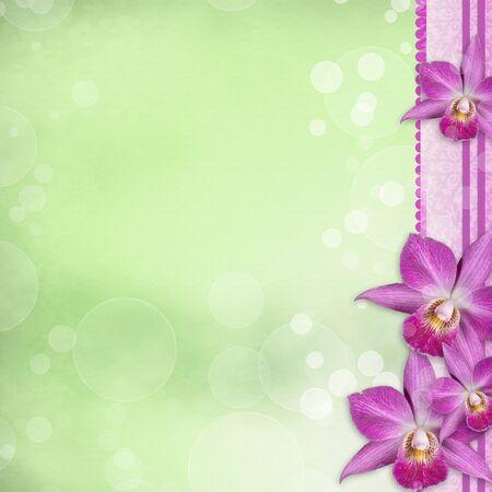Beautiful Orchid border  photo