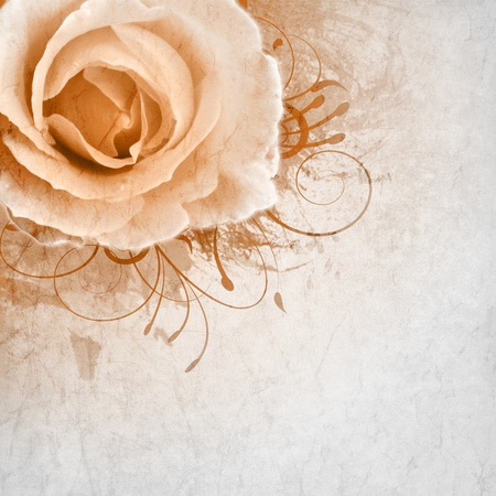 beige wedding background with roses photo