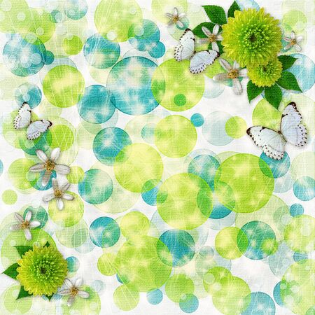 Green and blue bokeh background with decorative frames, butterfly,  flowers  photo