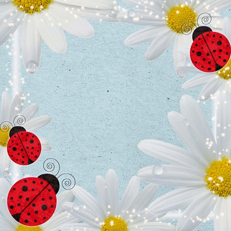 background with ladybugs  and camomile photo