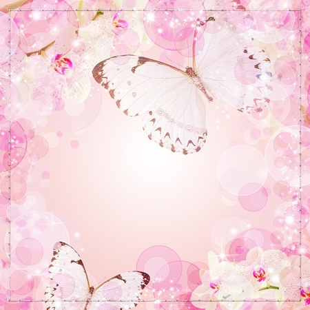 orchids: Butterflies and orchids flowers beige background