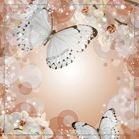 detail invitation: Butterflies and orchids flowers beige background