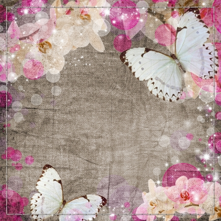 Butterflies and orchids flowers beige background photo
