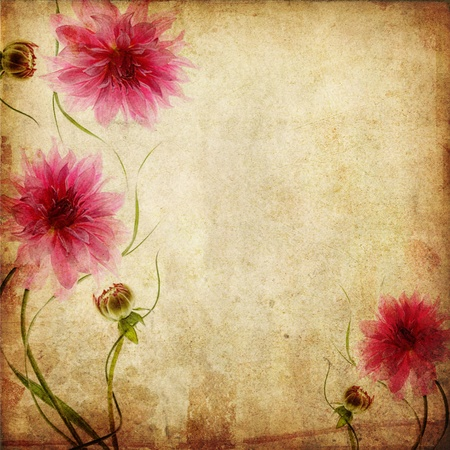 Old paper background with pink flowers  Stock Photo - 12816893