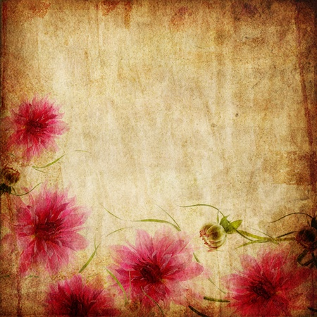 Old paper background with pink flowers  photo