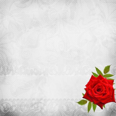 anniversaire mariage: Fond blanc beau mariage Banque d'images