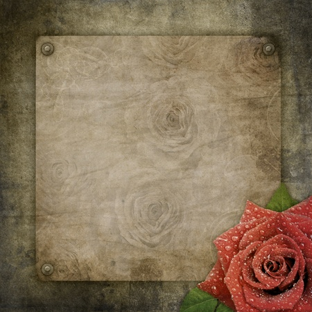album photo: Old vintage paper on textured   background  Stock Photo