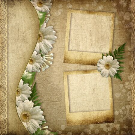 Vintage card for the holiday with daisy flower,  old frames