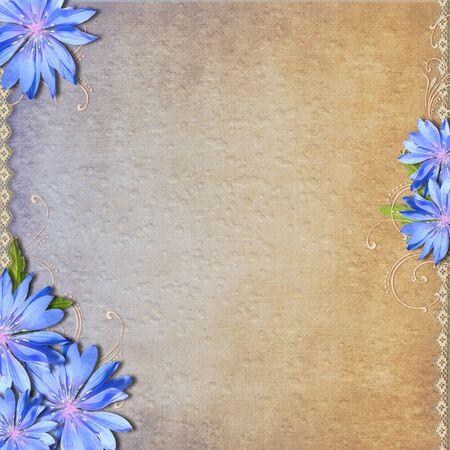 Grunge background with chicory  photo
