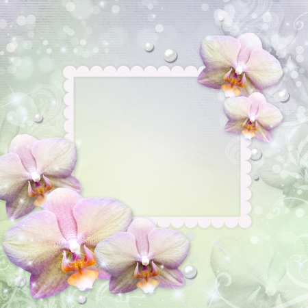 orchid and photo frame  photo