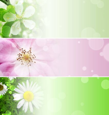 set of banner with different flower photo