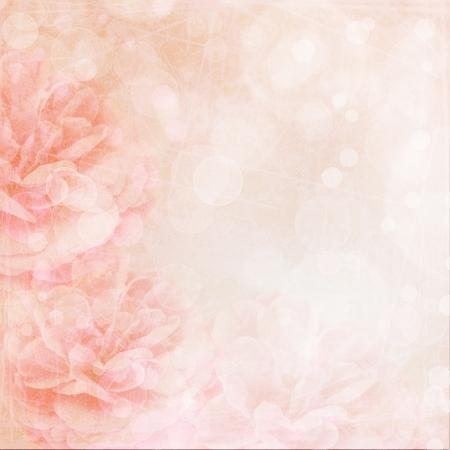Schöne rosa Hochzeit Hintergrund mit Rosen Standard-Bild - 22666999
