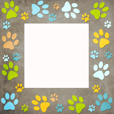 Animal paws   frame photo