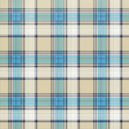 blue blanket: Seamless plaid pattern