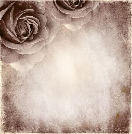 Papier elegant Hintergrund mit Rosen Standard-Bild - 37121091