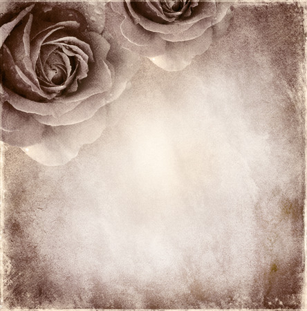 Paper elegant  background with roses
