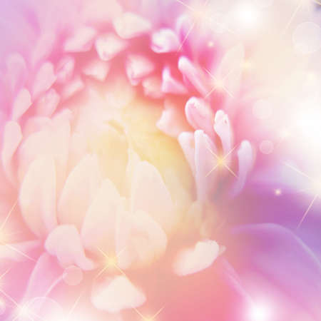 fragile peace: beautiful  floral background with  bokeh Stock Photo