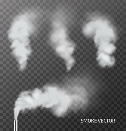 Realistic smoke, steam on transparent background. Vector Vettoriali