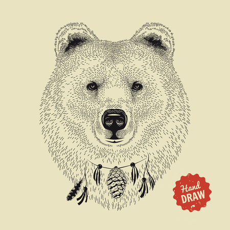 Vector sketch of a bears face. Bear head, front view. Hand drawn illustration