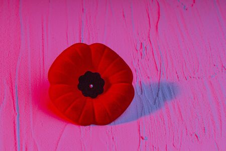 Remembrance Day Poppy Flower with a red light Banco de Imagens