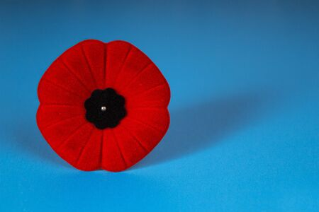 Remembrance Day Poppy Flower with a blue Background