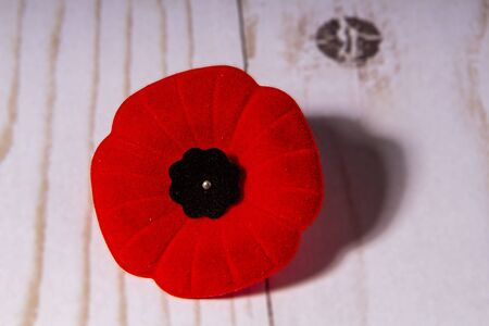 Remembrance Day Poppy Flower with a wooden Background Standard-Bild