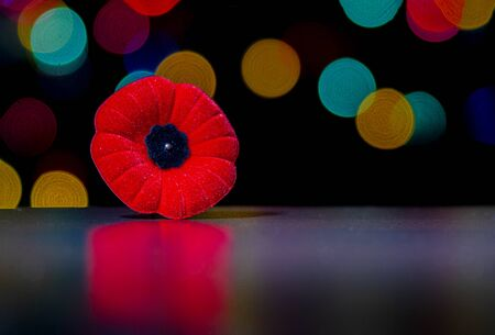 Remembrance Day, Poppy Flower with christmas lights, December holidays