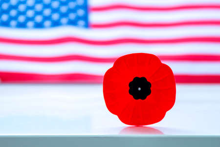 A remembrance day poppy flower with an American flag on the background.