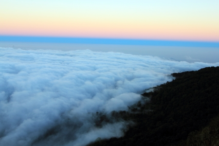 The sea of fog at Doi Pha Hom Pok National Park 1  photo
