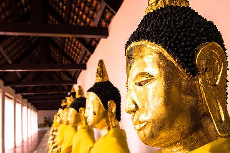 thani: Buddha statue at wat phra borommathat chaiya Surat Thani in Thailand