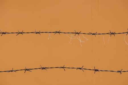 deterrent: Old barbed wire and rust, ants on Orange background.