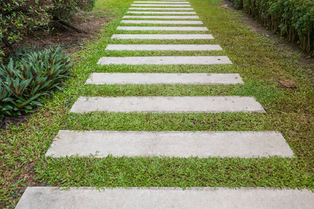 green lines: The walkway on the grass in the garden . Stock Photo