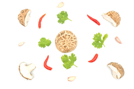 Top view food  collection  mushrooms with Red chili, garlic, coriander , Green leaf isolated on white background.