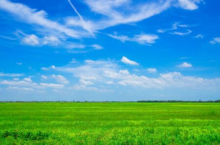 landscape , Beautiful daytime blue sky and green grass . 스톡 콘텐츠 - 128859675