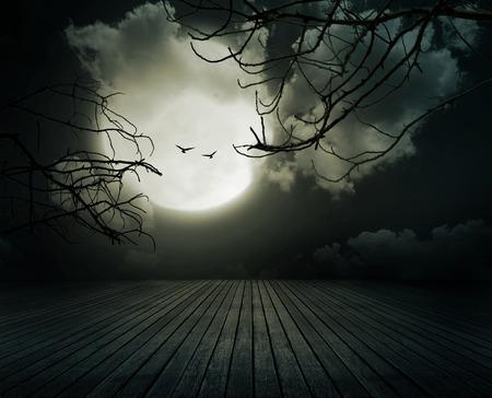 calabazas de halloween: Fondo de Halloween, Suelo de madera con la rama y la luna llena borrosa, estilo oscuro.