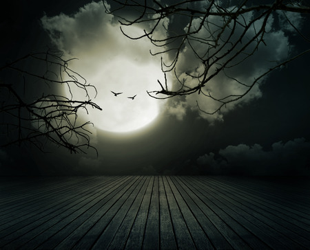 fear: Halloween background, Wooden floor with branch and blurred full moon, Dark style.