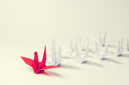 Close up red bird leading among white, Leadership concept, retro filter, copy space.