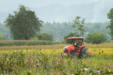 stubble field: Tractor plowing the stubble field