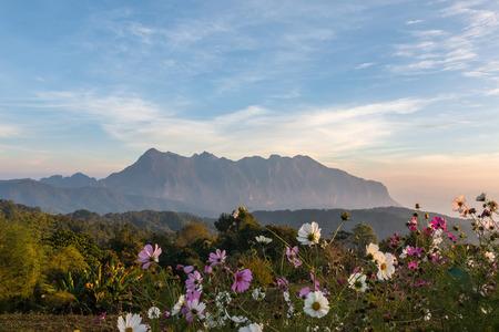Sunrise on Doi Luang Chiang Dao, taken from Doi Mae Taman, Chiang Mai, Thailand. Stock Photo