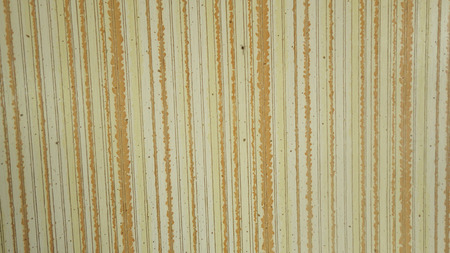 wall paper: wall paper vertical pattern