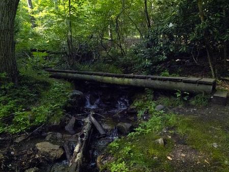 wooden bridge in the park