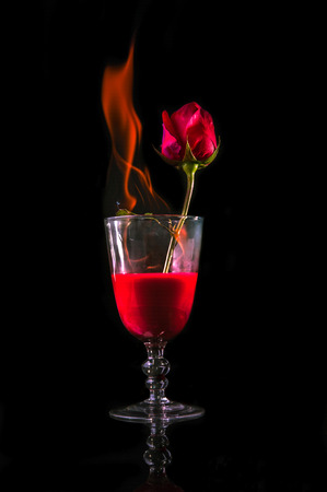 rose fire in wine glass on black background photo