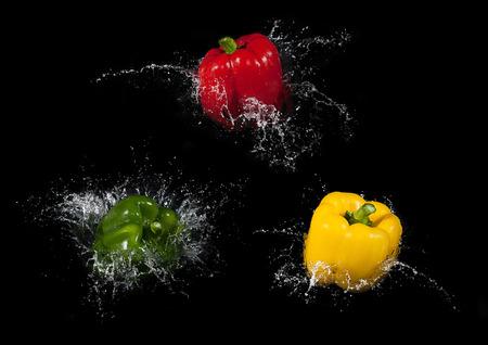 Colorful bell pepper vegetable on black background