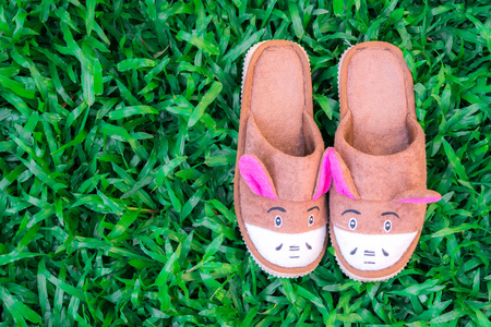 foot gear: animal house slippers on mown lawn grass in the summer garden