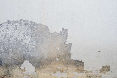 peeling paint: Old Wallpaper - Peeling paint Stock Photo