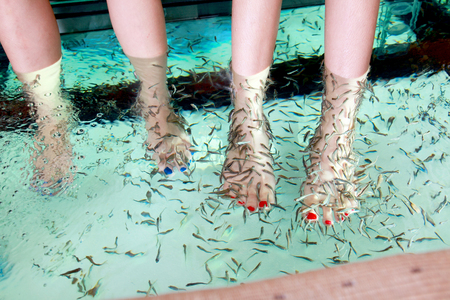 fish Spa Foot soak in water relax Stockfoto