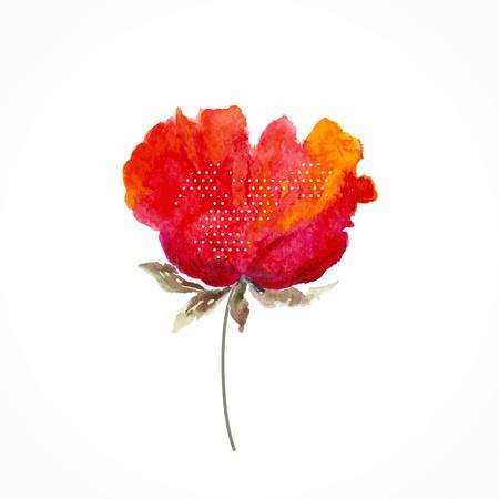 Fleur rouge d'aquarelle floral illustration Floral élément décoratif Vector floral background Banque d'images - 21580694