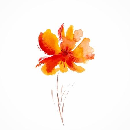 오렌지 꽃 수채화 꽃 그림 꽃 장식 요소 벡터 꽃 배경 일러스트