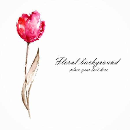 Fleur rouge de tulipe Aquarelle décoration florale Bouquet floral floral carte d'anniversaire Banque d'images - 22699671