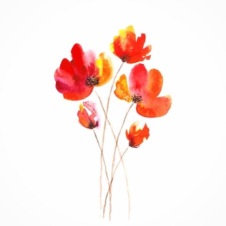Flores rojas amapolas Acuarela ilustración floral bouquet floral del vector fondo floral Tarjeta de cumpleaños Foto de archivo - 25156155